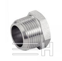 Male / Female Hexagonal Reducer Npt, Inconel 601